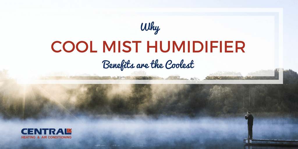 Why Cool Mist Humidifier Benefits Are The Coolest