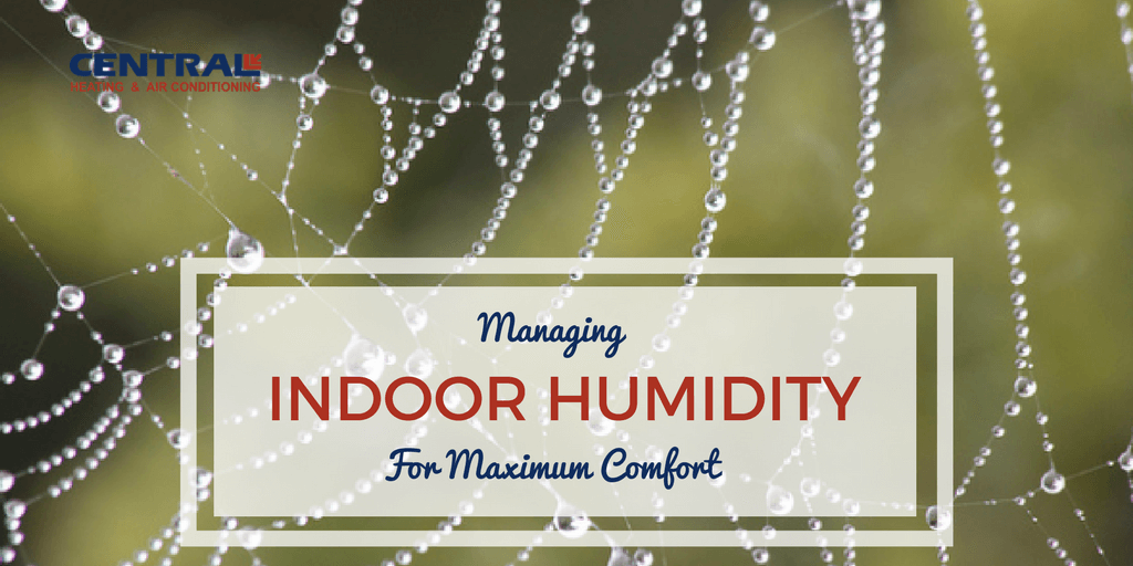 Ideal Humidity For Bedroom.Managing Ideal Indoor Humidity For Maximum Comfort